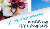 Hawaii Honeymoon Gift Registry
